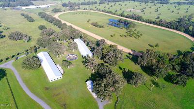 Belleview, Ocala, Ocala Fl Farm For Sale: 12261 S Highway 475