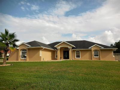 Ocala Single Family Home For Sale: 10364 SW 41 Court