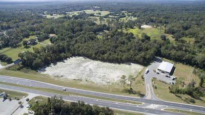 Ocala Residential Lots & Land For Sale: SE Hwy 441