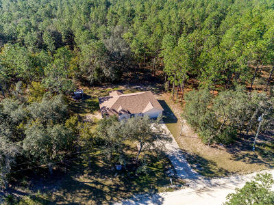 Dunnellon Single Family Home For Sale: 13310 SW 80th Street
