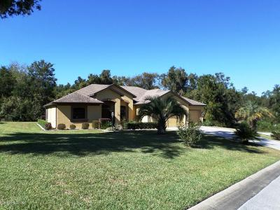 Dunnellon Single Family Home For Sale: 8329 SW 196 Court Road
