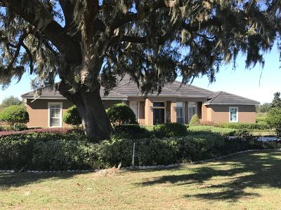 Ocala Single Family Home For Sale: 9600 SW 27 Avenue