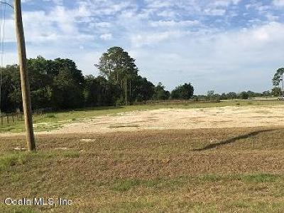 Belleview Residential Lots & Land For Sale: 8200 County Road 25