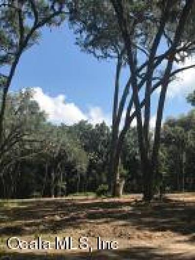 Ocala Residential Lots & Land For Sale: SE 7th Avenue Road