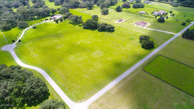 Ocala Residential Lots & Land For Sale: SW 11 Terrace