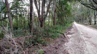 Residential Lots & Land Pending-Continue to Show: SE 41 Highway