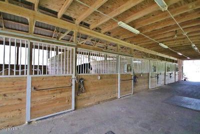 Citra Farm For Sale: NE 45th Avenue Center