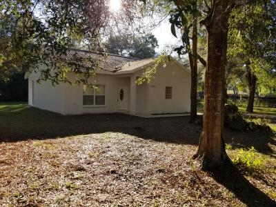 Ocala Single Family Home For Sale: 7001 NW 57 Avenue