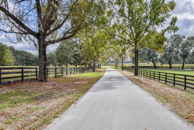 Reddick Farm For Sale: 8351 NW 110th Street