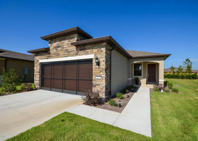 Ocala Single Family Home For Sale: 9687 SW 76th Lane Road