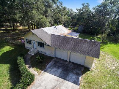 Lady Lake Single Family Home For Sale: 254 E Lady Lake Boulevard