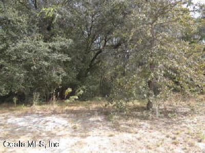 Ocala Residential Lots & Land For Sale: SW 172 Loop