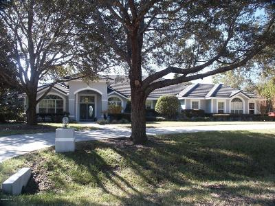 Citrus County Single Family Home For Sale: 3738 N Grayhawk Loop