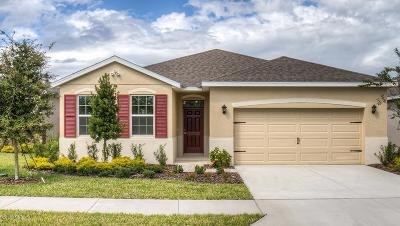 Ocala Single Family Home For Sale: 9125 SW 60th Court Road