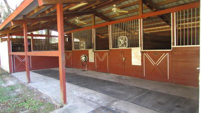 Ocala Farm For Sale: 10453 SE 29th Avenue