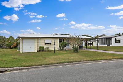 Lady Lake Single Family Home For Sale: 721 Royal Palm Avenue