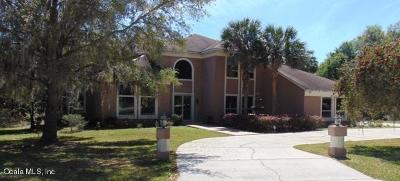 Ocala Single Family Home For Sale: 7399 SE 12th Circle