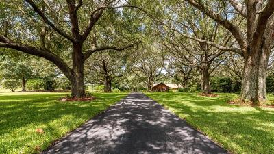 Ocala Farm For Sale: 16250 SW 20th Avenue Road