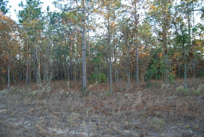 Ocala Residential Lots & Land For Sale: SW 66 Street