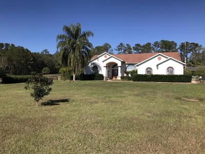Ocala Single Family Home For Sale: 5959 NW 96th Lane