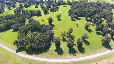 Via Paradisus Residential Lots & Land For Sale: SE 22nd Avenue