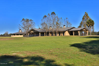 Belleview, Ocala, Ocala Fl Farm For Sale: 12839 Highway 475
