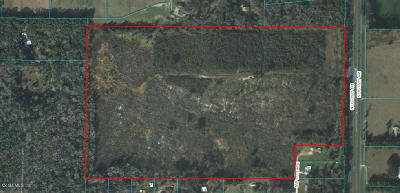 Ocala Residential Lots & Land For Sale: Hwy 441
