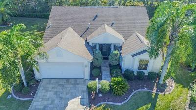 The Villages Single Family Home For Sale: 1302 Bando Lane