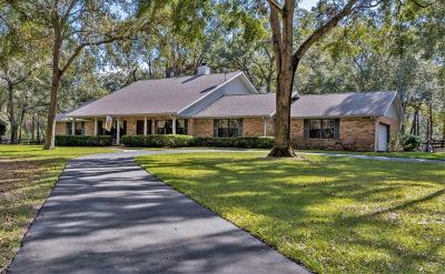 Ocala Single Family Home For Sale: 50 SE 123rd Street Road