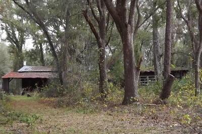 Ocklawaha Single Family Home Pending: 17080 SE 86th Lane