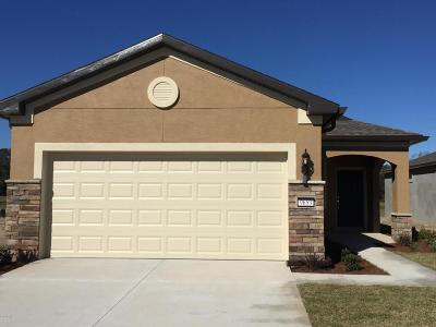 Lake County, Marion County Single Family Home For Sale: 9653 SW 63rd Loop