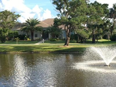 Single Family Home For Sale: 113 Gaillardia Loop Loop