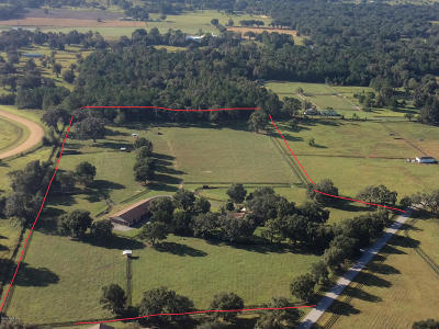 Ocala Farm For Sale: 13346 NW 82nd Street Road