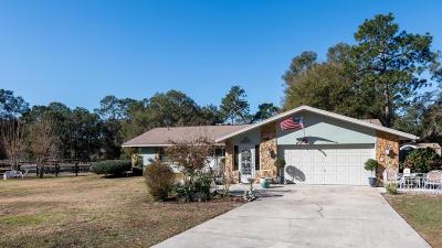 Ocala Single Family Home For Sale: 10024 SW 65th Terrace
