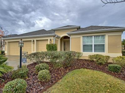 Lake County, Sumter County Single Family Home For Sale: 3002 Twisted Oak Way