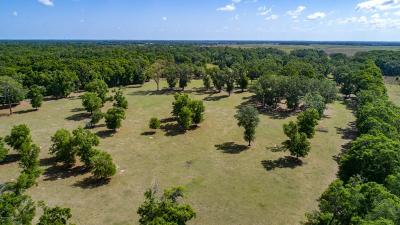 Ocala Farm For Sale: 8280 SW 41st Place Road