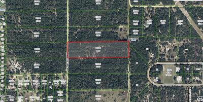 Citrus County Residential Lots & Land For Sale: 6227 N Treefarm Avenue