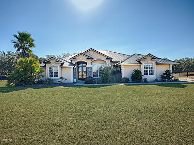 Lake County, Sumter County Single Family Home For Sale: 2855 County Road 202
