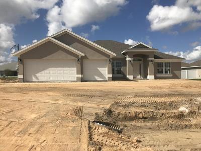 Ocala Single Family Home For Sale: 9838 SW 55th Avenue Road