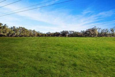 Ocala Residential Lots & Land For Sale: 7305 NW 90th Avenue