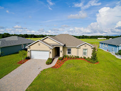 Ocala Single Family Home For Sale: 9127 SE 48th Court Road