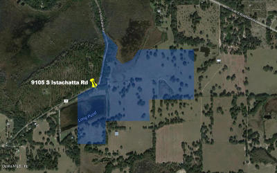 Citrus County Residential Lots & Land For Sale: 9105 S Istachatta Road