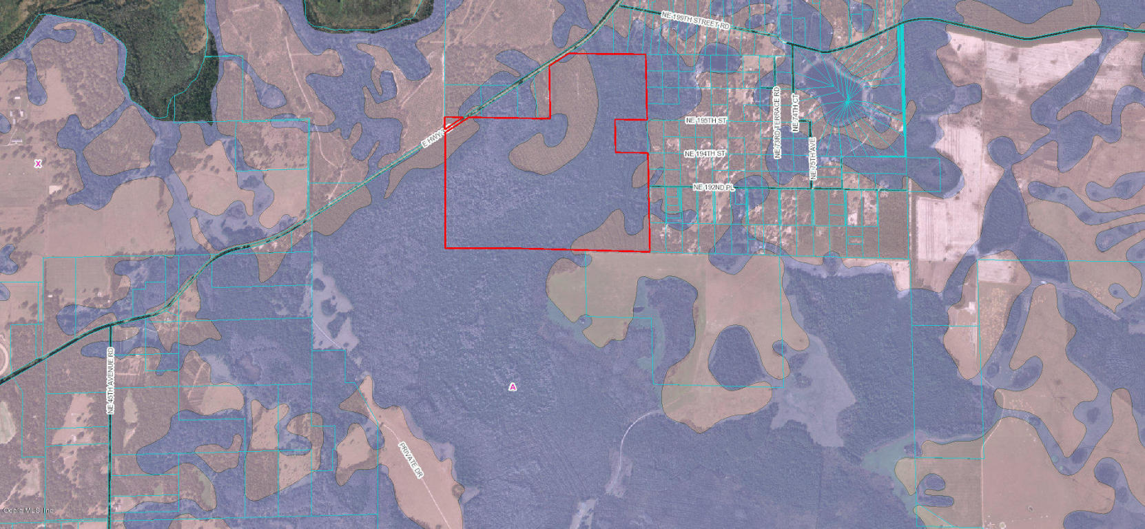 E Hwy 318 Citra Fl Mls 530091 The Spinosa Cochran Team