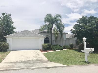 Ocala Palms Single Family Home For Sale: 2031 NW 50th Avenue