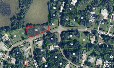 Citrus County Residential Lots & Land For Sale: 11907 W Timberlane Drive