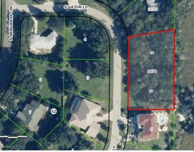 Citrus County Residential Lots & Land For Sale: 4655 S Gator Loop