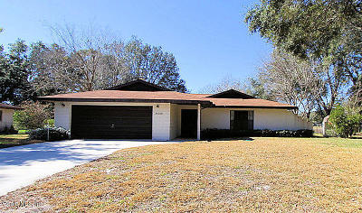 Lake County, Sumter County Single Family Home For Sale: 36320 West Spring Lake Blvd.