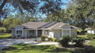 Single Family Home For Sale: 3180 N Pinelake Village Point