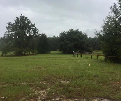 Citrus County Residential Lots & Land For Sale: 8189 W Little Hunter Court