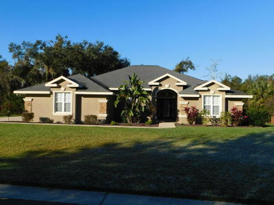 Belleview Single Family Home For Sale: 10360 SE 42nd Court